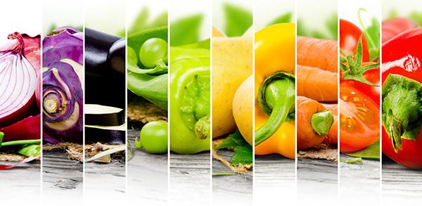 תזונה רגילה ותזונת ספורטאים